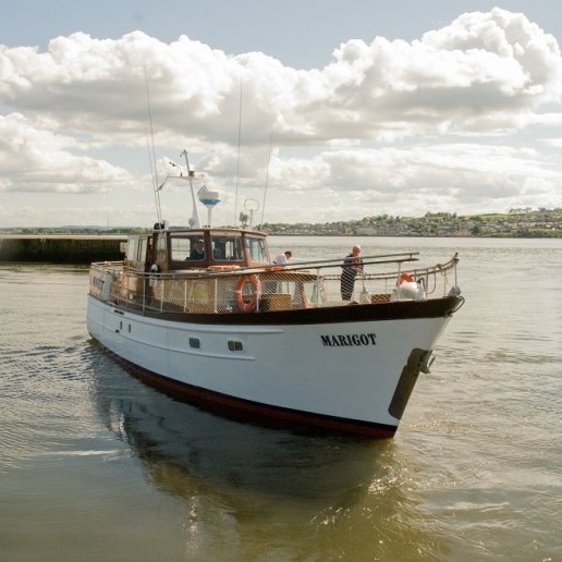 Marigot at Broughty Harbour